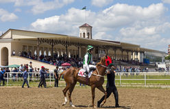 Before horse race. Royalty Free Stock Photography