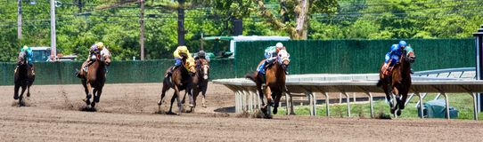 Horse Race Panorama. A horse race in a panoramic format Stock Photos