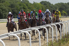 Horse race for the prize Derby. Royalty Free Stock Photography