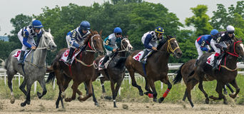 Horse race for the prize Jockey Cluba. Royalty Free Stock Images