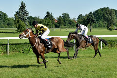 Horse race for the prize of the President of the City of Wroclaw on Juni 8, 2014. Stock Images