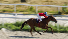 Horse race in Pyatigorsk. PYATIGORSK,RUSSIA - AUGUST 13,2017: Horse race for the traditional prize of Big Letni- the oldest and the largest racecourses in Russia Stock Photography