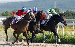 Horse race in Pyatigorsk. PYATIGORSK,RUSSIA - AUGUST 13,2017: Horse race for the traditional prize of Big Letni- the oldest and the largest racecourses in Russia Royalty Free Stock Photo