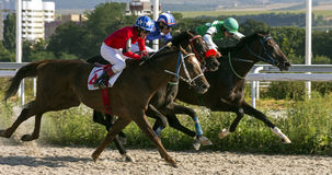 Horse race in Pyatigorsk. PYATIGORSK,RUSSIA - AUGUST 13,2017: Horse race for the traditional prize of Big Letni- the oldest and the largest racecourses in Russia Royalty Free Stock Images