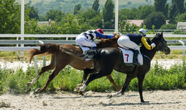 Horse race in Pyatigorsk. PYATIGORSK,RUSSIA - AUGUST 06,2017: Horse race for the traditional prize of  Bolshoi Summer- the oldest and the largest racecourses in Royalty Free Stock Photo