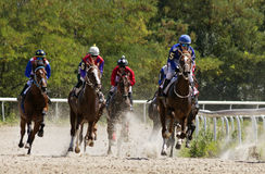 Horse race in Pyatigorsk. PYATIGORSK,RUSSIA - AUGUST 13,2017: Horse race for the traditional prize of Budennogo- the oldest and the largest racecourses in Russia Royalty Free Stock Images