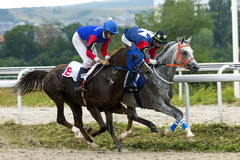 Horse race in Pyatigorsk Royalty Free Stock Image