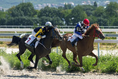 Horse race in Pyatigorsk. PYATIGORSK,RUSSIA - AUGUST 06,2017:Horse race for the traditional Prize in honor of the holiday of Akhalteke horse breeding - the Royalty Free Stock Photo