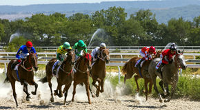 Horse race in Pyatigorsk. PYATIGORSK,RUSSIA - AUGUST 13,2017: Horse race for the traditional prize of Ogranichitelni - the oldest and the largest racecourses in Royalty Free Stock Photos
