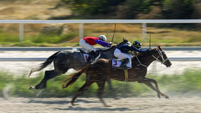 Horse race in Pyatigorsk Royalty Free Stock Images