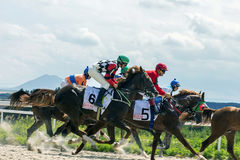 Horse race in Pyatigorsk. PYATIGORSK,RUSSIA - JULY 30,2017: Horse race for the traditional prize of  Big Summer- the oldest and the largest racecourses in Russia Royalty Free Stock Photography