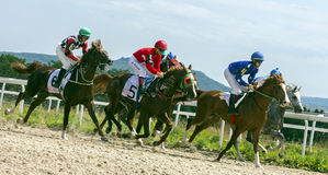 Horse race in Pyatigorsk. PYATIGORSK,RUSSIA - JULY 30,2017: Horse race for the traditional prize of  Big Summer- the oldest and the largest racecourses in Russia Royalty Free Stock Photos