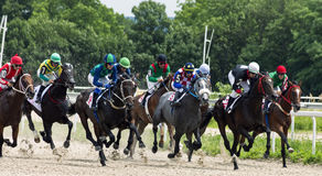 Horse race in Pyatigorsk. PYATIGORSK,RUSSIA - JULY 23,2017:Horse race for the traditional prize of Bolshoi Letni- the oldest and the largest racecourses in Stock Photos
