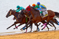 Horse race on Sanlucar of Barrameda Stock Images