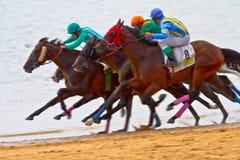 Horse race on Sanlucar of Barrameda Stock Images