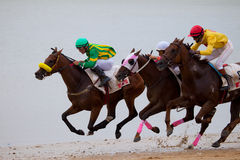 Horse race on Sanlucar of Barrameda, Spain, 2010 Stock Image