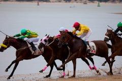 Horse race on Sanlucar of Barrameda, Spain Stock Image