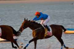 Horse race on Sanlucar of Barrameda, Spain Royalty Free Stock Photography