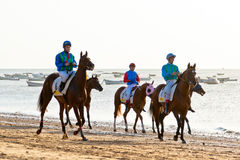 Horse race on Sanlucar of Barrameda, Spain Royalty Free Stock Images