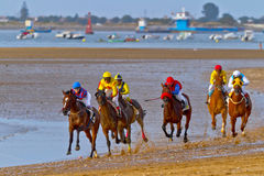 Horse race on Sanlucar of Barrameda, Spain Royalty Free Stock Photos