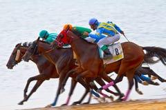 Horse race on Sanlucar of Barrameda, Spain Royalty Free Stock Photos