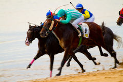 Horse race on Sanlucar of Barrameda, Spain Royalty Free Stock Photography