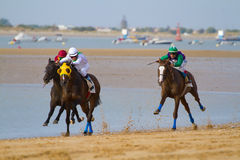 Horse race on Sanlucar of Barrameda, Spain Stock Photography