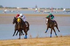 Horse race on Sanlucar of Barrameda, Spain. SANLUCAR DE BARRAMEDA, CADIZ, SPAIN - AUGUST 11: Unidentified riders race horses on Sanlucar de Barrameda beach on stock photography