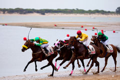 Horse race on Sanlucar of Barrameda, Spain, August  2010 Stock Photography