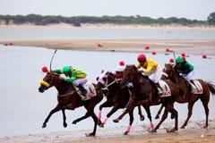 Horse race on Sanlucar of Barrameda, Spain, August  2010 Stock Photography