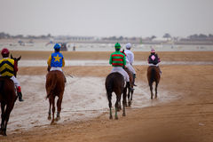 Horse race on Sanlucar of Barrameda, Spain, August  2010 Stock Image