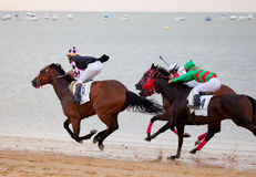 Horse race on Sanlucar of Barrameda, Spain, August  2010 Stock Images