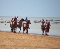 Horse race on Sanlucar of Barrameda, Spain, August  2010 Royalty Free Stock Image