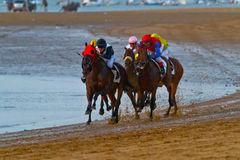 Horse race on Sanlucar of Barrameda, Spain, August  2011 Royalty Free Stock Photography
