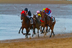 Horse race on Sanlucar of Barrameda, Spain, August  2011 Royalty Free Stock Photo