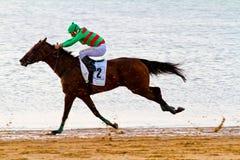 Horse race on Sanlucar of Barrameda, Spain, August  2011 Stock Images