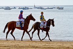 Horse race on Sanlucar of Barrameda, Spain, August  2011 Royalty Free Stock Photography