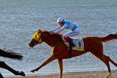 Horse race on Sanlucar of Barrameda, Spain, August  2011 Stock Photo