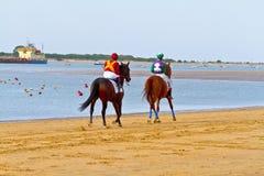 Horse race on Sanlucar of Barrameda, Spain, August  2011 Royalty Free Stock Photos