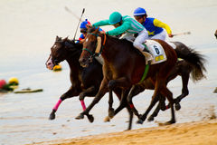 Horse race on Sanlucar of Barrameda, Spain, August  2011 Royalty Free Stock Images