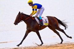 Horse race on Sanlucar of Barrameda, Spain, August  2011 Stock Photos