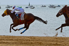 Horse race on Sanlucar of Barrameda, Spain, August  2011 Stock Photos