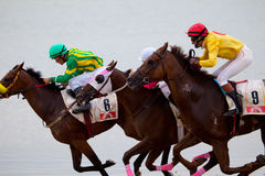 Horse race on Sanlucar of Barrameda, Spain Stock Image