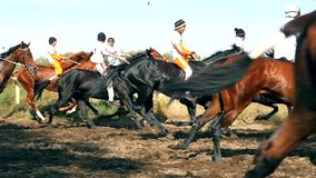 Horse race in slow motion. Horse riding competition in slow motion jockeys compete in horse races stock footage