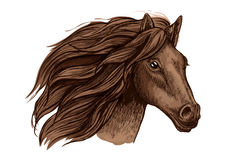 Horse race sport sign. Wild equine mustang running. Horse head vector isolated icon. Symbol for equine horse racing sport. Brown mare or stallion with wavy mane Stock Photo