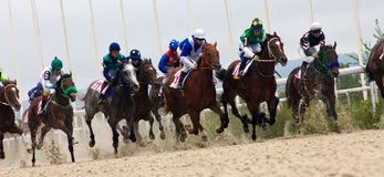 Horse race start. Royalty Free Stock Photo