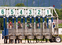Before horse race. Stock Images