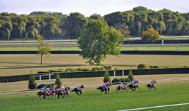 Horse race on summer day. Wide-angle view of race track on summer afternoon Stock Photography