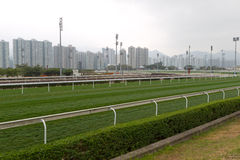 Horse race track. With turf track royalty free stock image