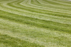 Horse race track with curve line Royalty Free Stock Photography